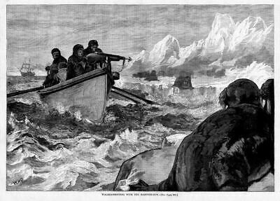 Walrus Hunting Shooting With Harpoon Gun, Boats, Ships