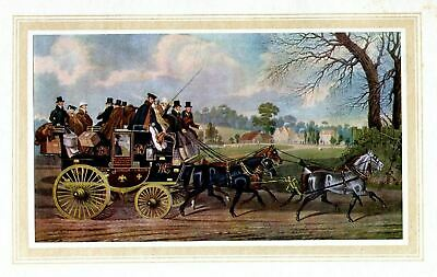 Horses, Four In Hand, New London Union Stagecoach Horse