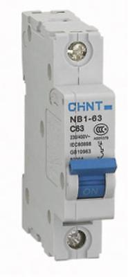 CHINT SINGLE POLE MCB (1-63A with B, C or D curves) NB1