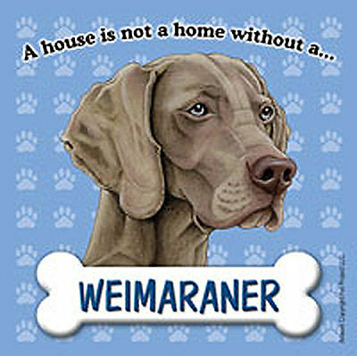 Weimaraner Dog Magnet Sign House Is Not A Home