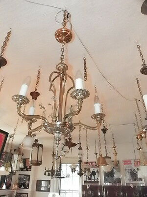 5 Arm Polished Brass Light With Glass Rosettes 290