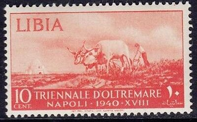 Libia 1940 - Triennale D'oltremare - C. 10 - Mh