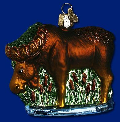 """Munching Moose"" (12135) Old World Christmas Glass Ornament"