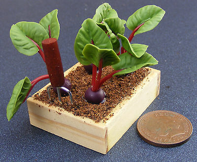 1;12 Scale Box Of 4 Beetroot Dolls House Miniature Vegetable Allotment Accessory