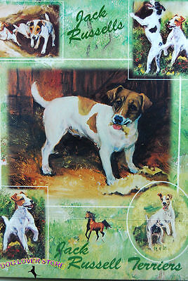 Jack Russell Dog Gift Present Wrap