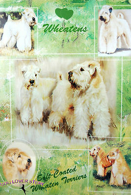 Soft Coated Wheaten Gift Wrapping Paper