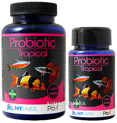 Nt Labs Tropical Fish Food Probiotic Clean Water Aquarium Slow Sinking Granules