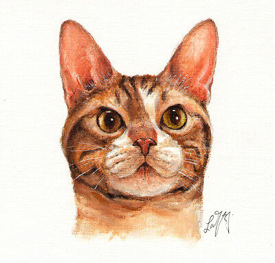 ★ Original Oil CAT Portrait Painting AMERICAN WIREHAIR Art on Canvas KITTEN