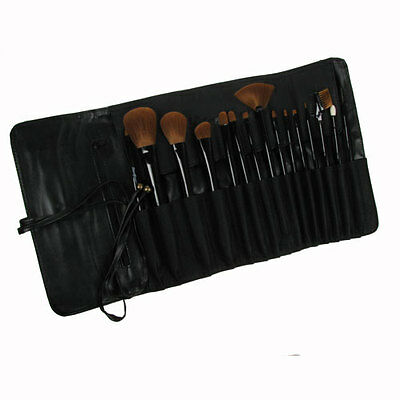 Stargazer Makeup Brush Set Cosmetic Professional Kit Face Contour Set Case 15pcs
