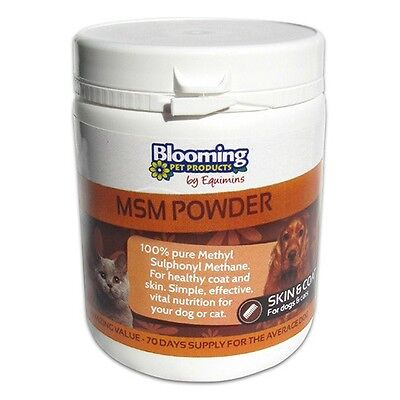 BLOOMING MSM POWDER DOG & CAT Cat & dog health, supplement, joints