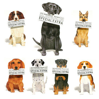 42 Dog Greetings Cards with Birthday Newspaper in it's Mouth EC0040