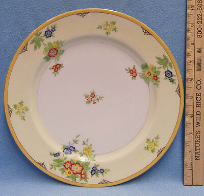 Dinner Plate Fine China Flower Pattern on Yellow White Gold Trim  Made In Japan