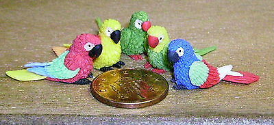 1:12 Scale 5 Mixed Parrots Dolls House Miniature Garden Small Polymer Clay Birds