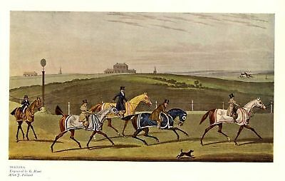 Horses Training For The Horse Race On Turf, Antique Color Sporting Print, Horse