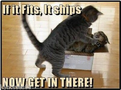 Funny Cat Humor If It Fits Its Ships Refrigerator Magnet