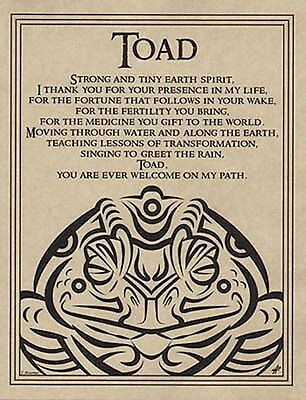 TOAD BLESSING POSTER  A4 SIZE Wicca Pagan Witch Witchcraft BOOK OF SHADOWS