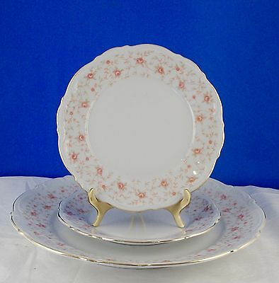 MITTERTEICH CHINA Lady Claire Dinner Plate,2 Bread Plates,Pink RosesTrailing