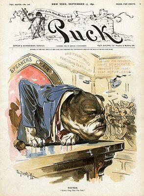 House Of Representatives Speaker's Chair, Bull-Dog Victor, Every Dog Has His Day