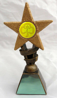 BROWNIE OR GUIDES STAR TROPHY INCLUDING YOUR ENGRAVING Choice of Sizes NEW