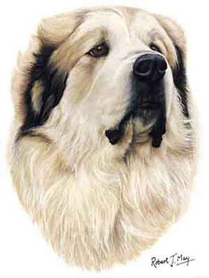 GREAT PYRENEES Dog Robert May Art Greeting Card Set of 6