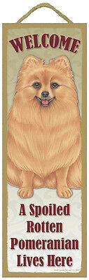 Spoiled Rotten Pomeranian Red Dog 5x15 Wood Door Welcome Sign USA Made