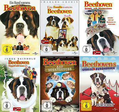 Ein Hund Namens Beethoven 1 - 6 Collection                           | DVD | 441