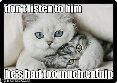 Funny Cat Humor Don't Listen To Him Refrigerator Magnet