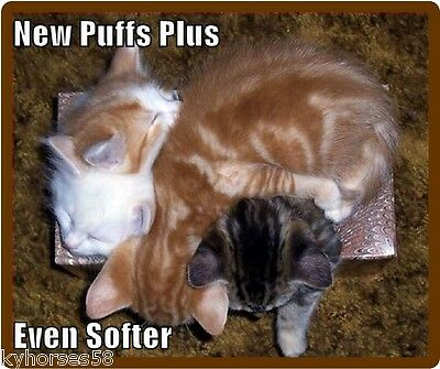 Funny Cat Humor New Puffs Plus Refrigerator Magnet