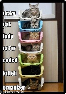 Funny Cat The Crazy Cat Lady Color Coded Organizer Refrigerator Magnet