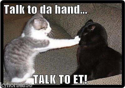 Funny Cat Humor Talk To The Hand Refrigerator Magnet