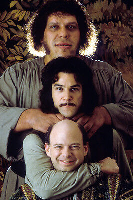 Andr� the Giant Wallace Shawn Mandy Patinkin The Princess Bride 24x36 Poster