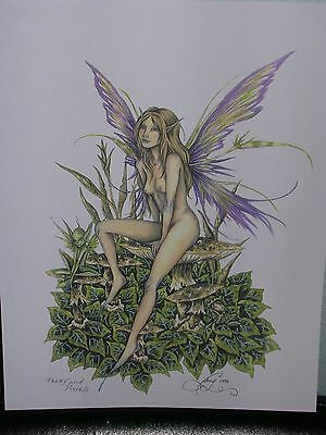 Amy Brown - Faery And Pixies - RARE