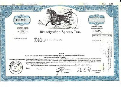 1978 Stock Certificate 1 Share Common Stock Brandywine Sports, Inc. (cancelled)