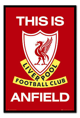 Liverpool FC Poster This Is Anfield Black Framed Ready To Hang Frame Free P&P