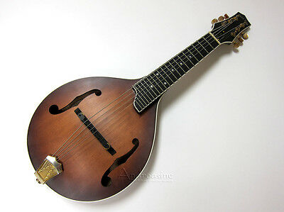 GOLD TONE 6-STRING A-STYLE ACOUSTIC ELECTRIC GUITAR MANDOLIN w/ HARD CASE GM-6+