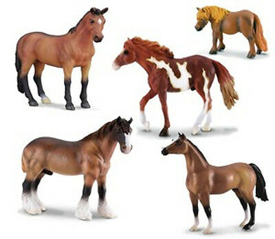 *NEW* 89103 CollectA Horse Life 5 Piece Model Box Set - Five Horses