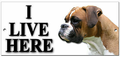 "Boxer ""i Live Here"" Metal Sign,dog Breeds,warning,security Sign."