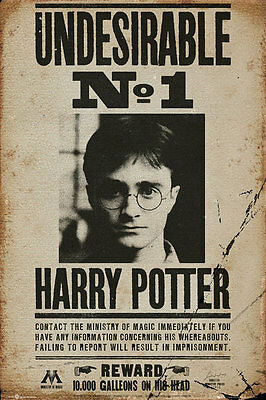 HARRY POTTER WANTED POSTER, Movie Poster Picture Print, Size 24x36