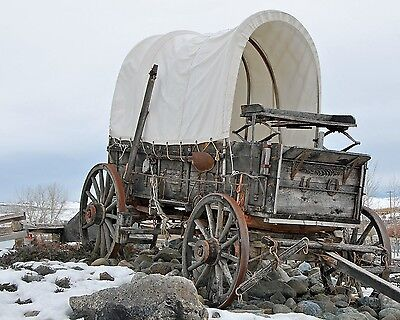 American Old West Covered Wagon / Prairie Schooner 8 x 10 GLOSSY Photo Picture