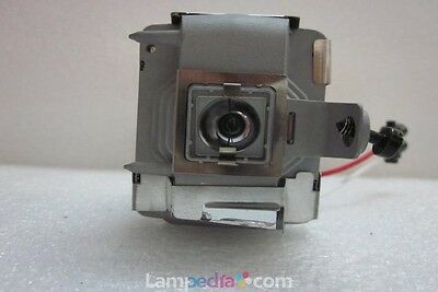 Projector Lamp for INFOCUS C250W OEM BULB with New Housing 180 Day Warranty