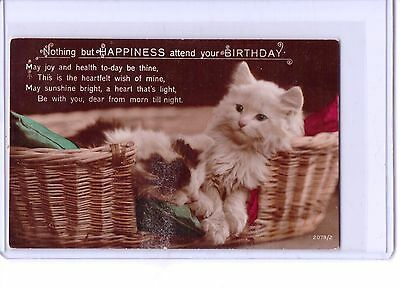 Vintage Cat Kitten In Basket Real Photo Postcard Birthday Happiness 2079 2