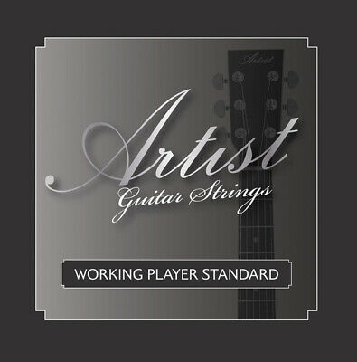 Artist ACST104712 12 String Acoustic Guitar Strings Bronze  - New