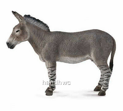 CollectA 88664 African Wild Ass Toy Model Donkey 2014 - NIP