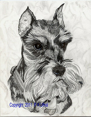 Ink/&Paint,Dog Art,Old English Sheepdog Print By PKUfnal