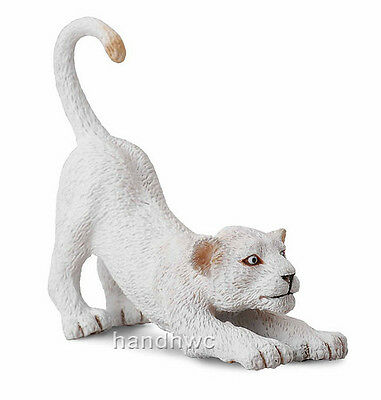 CollectA 88550 White Lion Cub Stretching Wildlife Animal Toy Model Replica - NIP