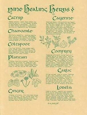 9 HEALING HERBS POSTER A4 SIZE Wicca Pagan Witch Witchcraft Goth BOOK OF SHADOWS
