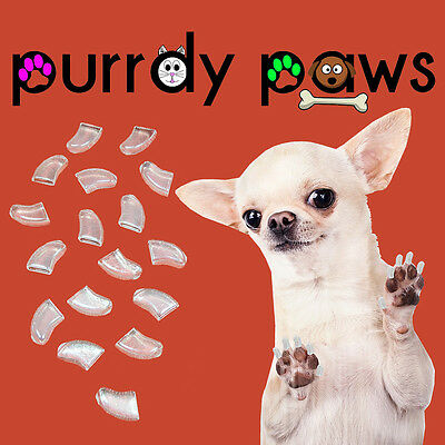 CLEAR Soft Nail Caps For DOG Claws  * Purrdy Paws BRAND * DOGS Scratch