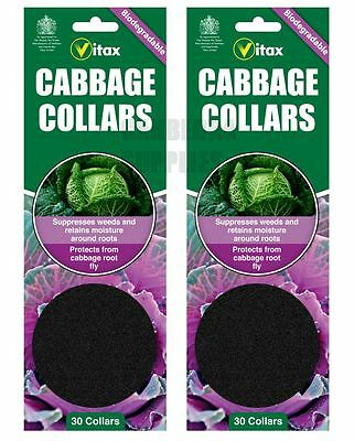 60 X Vitax Cabbage Collars Deters Root Fly Repels Slugs Snails Weeds