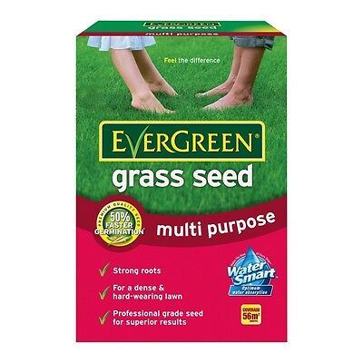 EVERGREEN MULTI PURPOSE LAWN GRASS SEED 1.68kg - TREATS 56m2 - FREE POSTAGE