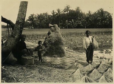 Photo Indochine Viet Nam ? Cambodge ? Vers 1930